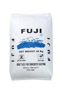 Fuji the Mighty Bear